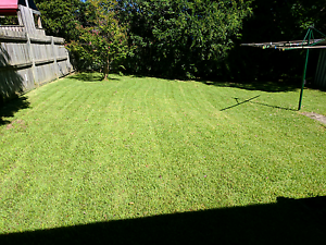 Mowing on the Central Coast Erina Gosford Area Preview