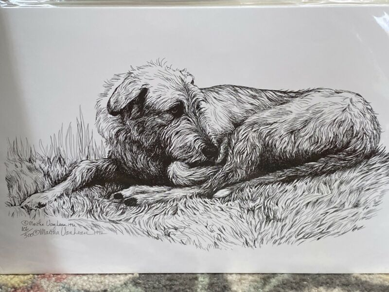 Irish Wolfhound Sleeping Ltd Ed 11x17 Print B Van Loan
