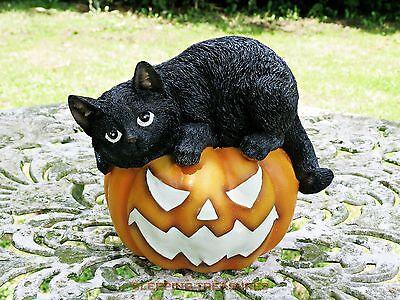BLACK CAT ON PUMPKIN GLOW IN THE DARK ORNAMENT INDOOR OR OUTDOOR, HALLOWEEN