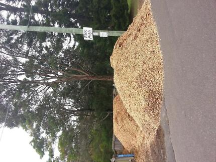 freeeee Mulch.  awesome stuff for the garden.