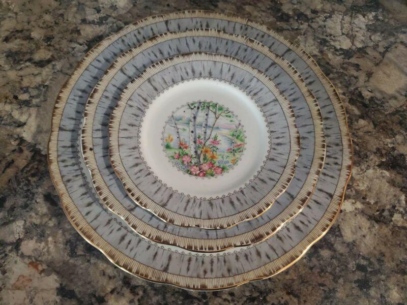 Set of 24 Royal Albert Silver Birch plates. Setting for 8 Dinner/Salad/dessert