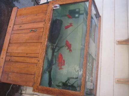 Fish tank for sale Geelong West Geelong City Preview