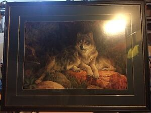 Wolves picture