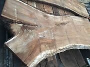 Blackwood Timber slabs. Huge Y-shape slabs Bentleigh East Glen Eira Area Preview