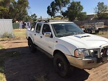 Nissan Navara D22 Dual cab 4x4 for sale or swaps Northam 6401 Northam Area Preview
