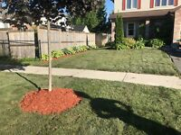 Sod, Excavation, Yard Clean Ups, Weeping Tiles and More