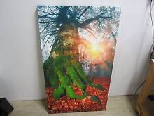 Photo Canvas Printing (YourPhoto Any Size) Delivered In Australia Perth Region Preview