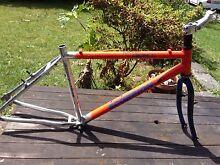 Scorpion Aluminium Scorpion Bicycle Bike Frame Oatley Hurstville Area Preview