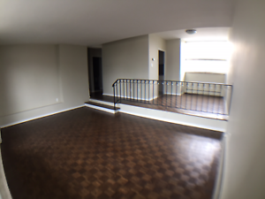 Newly Renovated 1 Bedroom Suite - Herkimer St. & Queen St. S