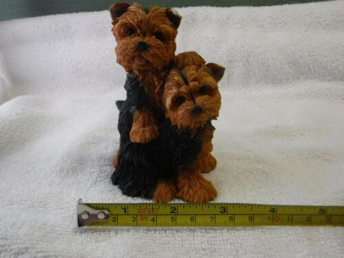 Yorkshire Terrier Yorkie Dog Tiggy And Chloe