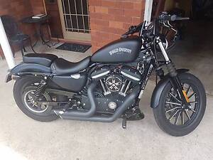 2014 Harley Davidson Iron 883 Matraville Eastern Suburbs Preview