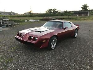 79 Firebird Formula Project