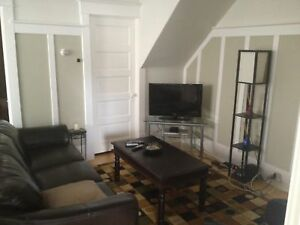 Amazing 1 bd FULLY FURNISHED with private yard