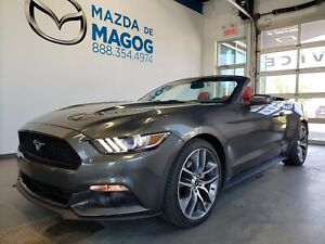 2015 Ford Mustang Eco Premium Cuir Rou