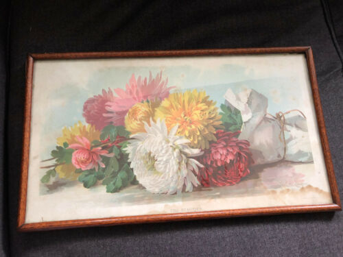 Vintage FALL BEAUTIES Framed Print 1894 PAUL DE LONGPRE Picture Frame