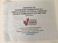 Fitness/Martial Arts Training ($175)
