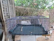 Chicken/Poultry Transport Cages and Incubator Kennedy Cassowary Coast Preview