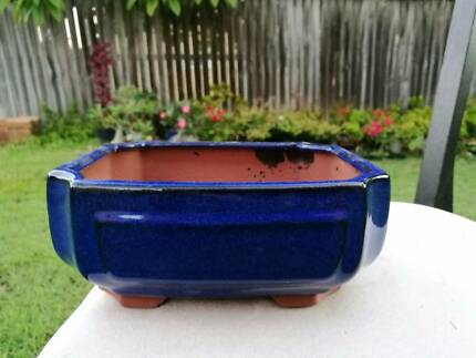 Brand new Glazed Bonsai Pot