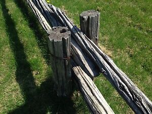 Old ceader fence posts