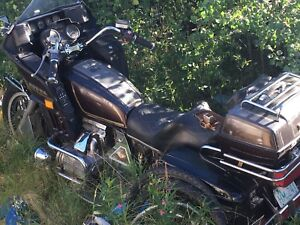 1981 Honda Gold Wing project or parts bike