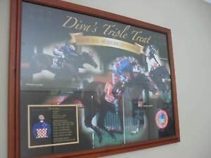 "HORSE RACING MEMORABILIA - MAKYBE DIVA  ""Diva's Triple Treat"" Hamlyn Terrace Wyong Area Preview"