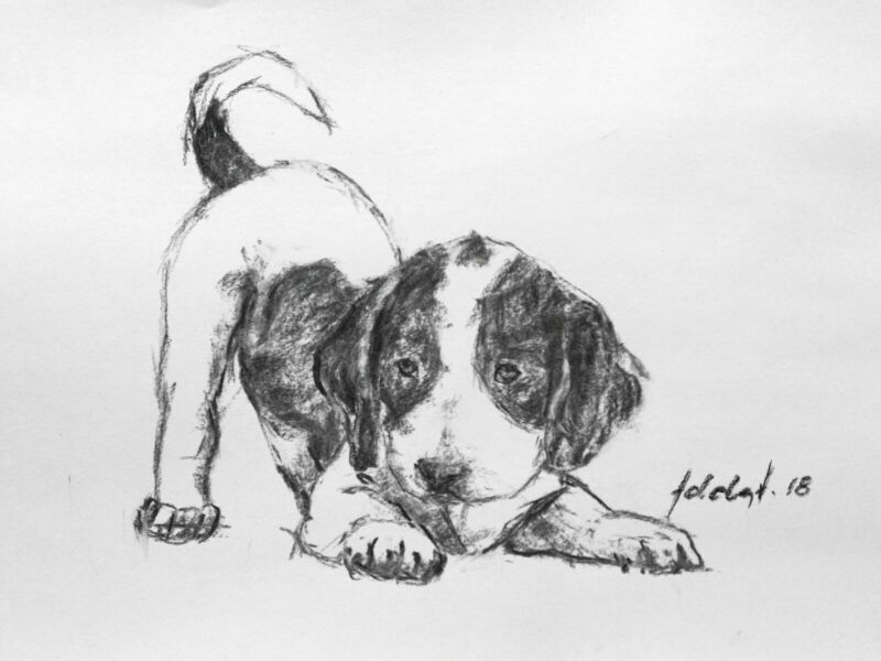 Charcoal+Dog+Drawing+Original+Art+A4+Pet+Sketch+Portrait+Playful+Puppy