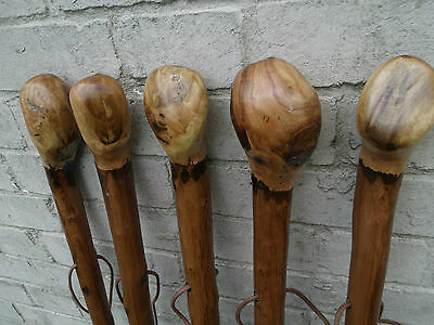 """Chestnut Wood Walking Stick Cane Root Ball Knob Rustic Thick Walking Cane 46""""✅"""