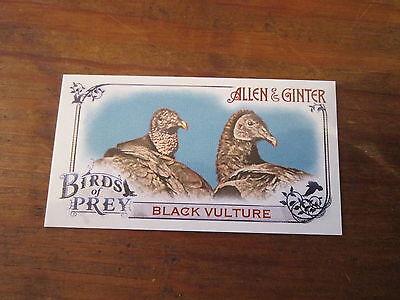 2015 ALLEN GINTER--MINI--BIRDS OF PREY--BLACK VULTURE--FREE SHIPPING