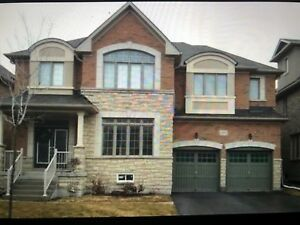 Newmarket home $2200