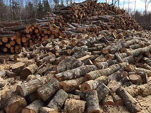 FIREWOOD   -   MacKinnon Forestry