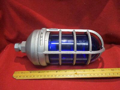 Stonco Vp11gc 100 Watt Pendant Mount Roughlyte Vaportight With Blue Glass Globe