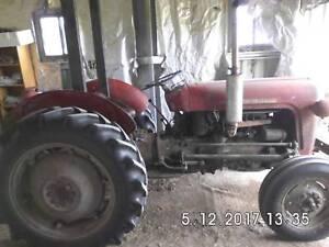 Massey ferguson tractor for sale farming vehicles gumtree massey ferguson tractor for sale farming vehicles gumtree australia free local classifieds fandeluxe Gallery