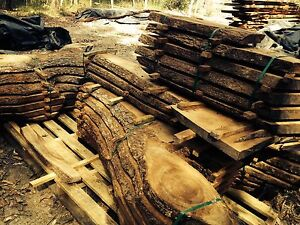 CAMPHOR LAUREL NATURAL EDGE TIMBER SLABS Elimbah Caboolture Area Preview