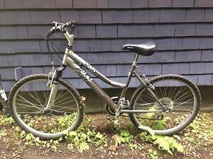 Infinity Superior 21-Speed Bike