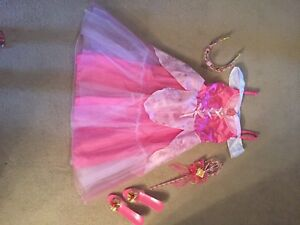 Disney sleeping beauty outfit