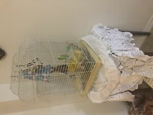 Bird with cage toys and food everything $45