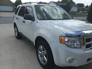 2010 Ford Escape w/ Features!  Windsor Region Ontario image 1