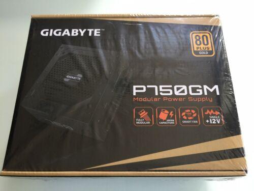 GIGABYTE GP-P750GM 750W ATX 12V v2.31 80 PLUS GOLD Certified Full Modular