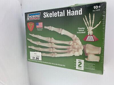 Study Hand Joint Skeleton Anatomical Display Human Medical Anatomy Teaching Tool