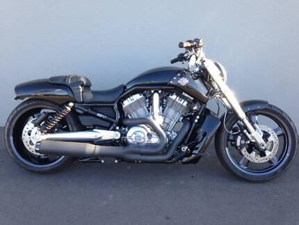 2015 Harley-Davidson VROD Muscle
