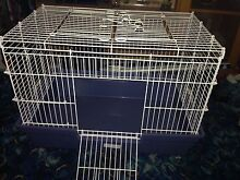 pet cage for sale, suitable for any rodent East Devonport Devonport Area Preview
