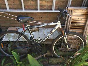 Mountain bike-Roadmaster 21 gear