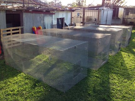 8ft x 3ft x 3ft bird aviary Riverstone Blacktown Area Preview
