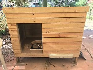 Extra extra large wooden dog kennel Greenbank Logan Area Preview