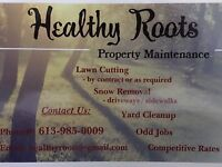 Healthy Roots Property Maintenance