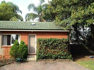 Spacious Granny Flat for rent for young couples, students St Ives Ku-ring-gai Area Preview
