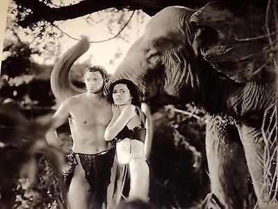 JOHNNY WEISSMULLER & MAUREEN O'SULLIVAN / TARZAN /  8 X 10  B&W  PHOTO