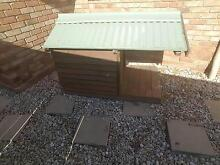 Dog Kennel (Large) Ipswich Ipswich City Preview