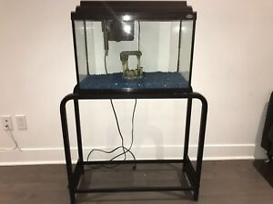 Aquarium 20 gallon with stand for sale