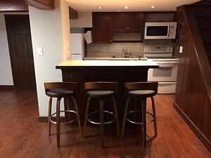 New! Executive 2 Bedroom Apartment in Skyline Acres